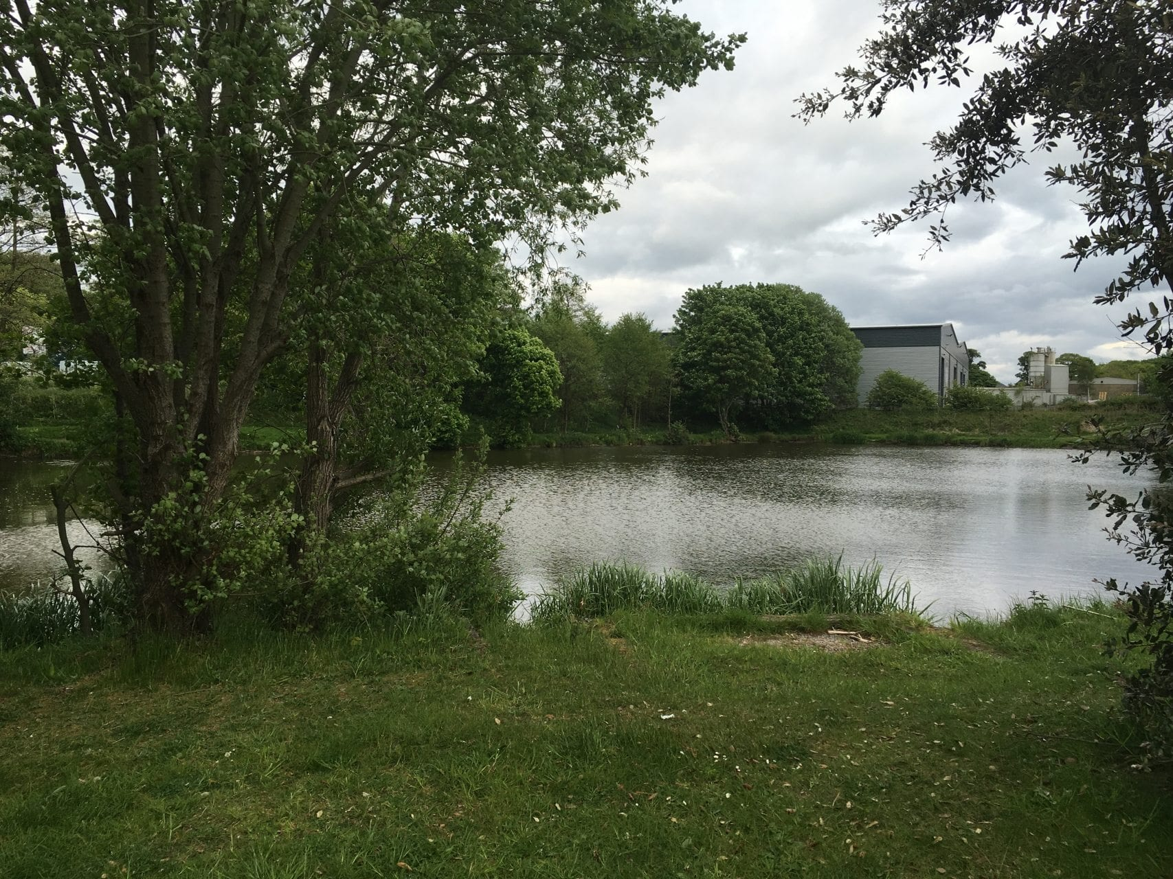 Ash Lodge Fishing Lake Leyland