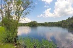 Distant Island on Bantons Lake
