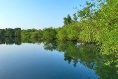 Bantons Lake Wyreside Lakes Fishery