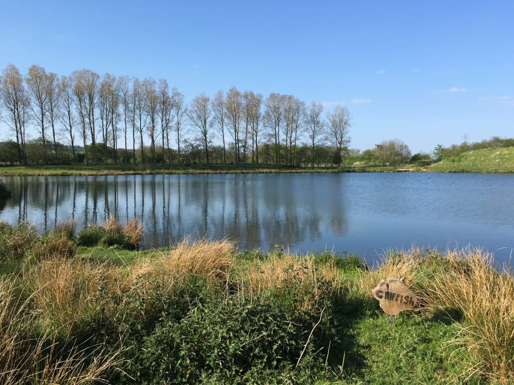 Griffiths Lake Borwick Fishing