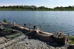 Comfy pegs @ Borwick Fishing