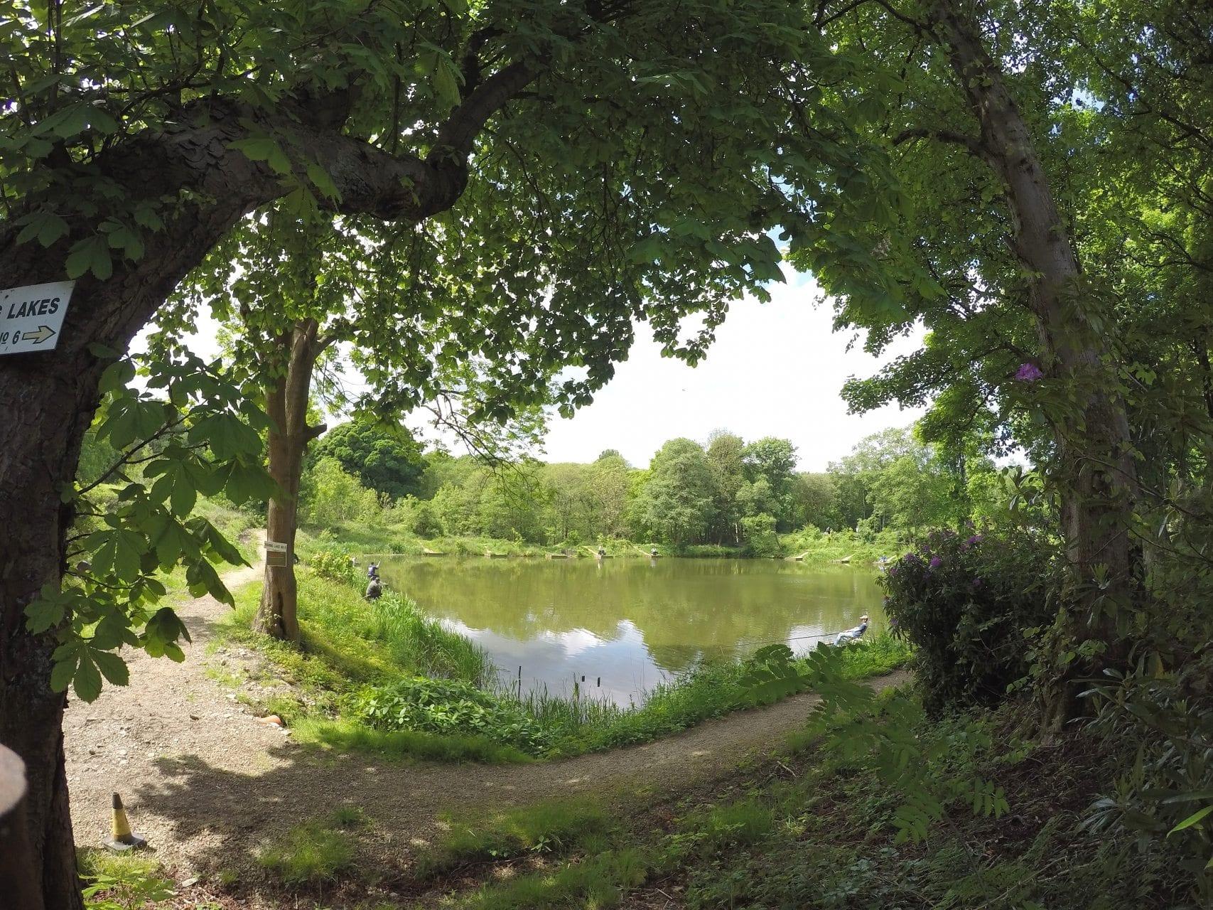 Lake 6 Bradshaw Hall Fishery