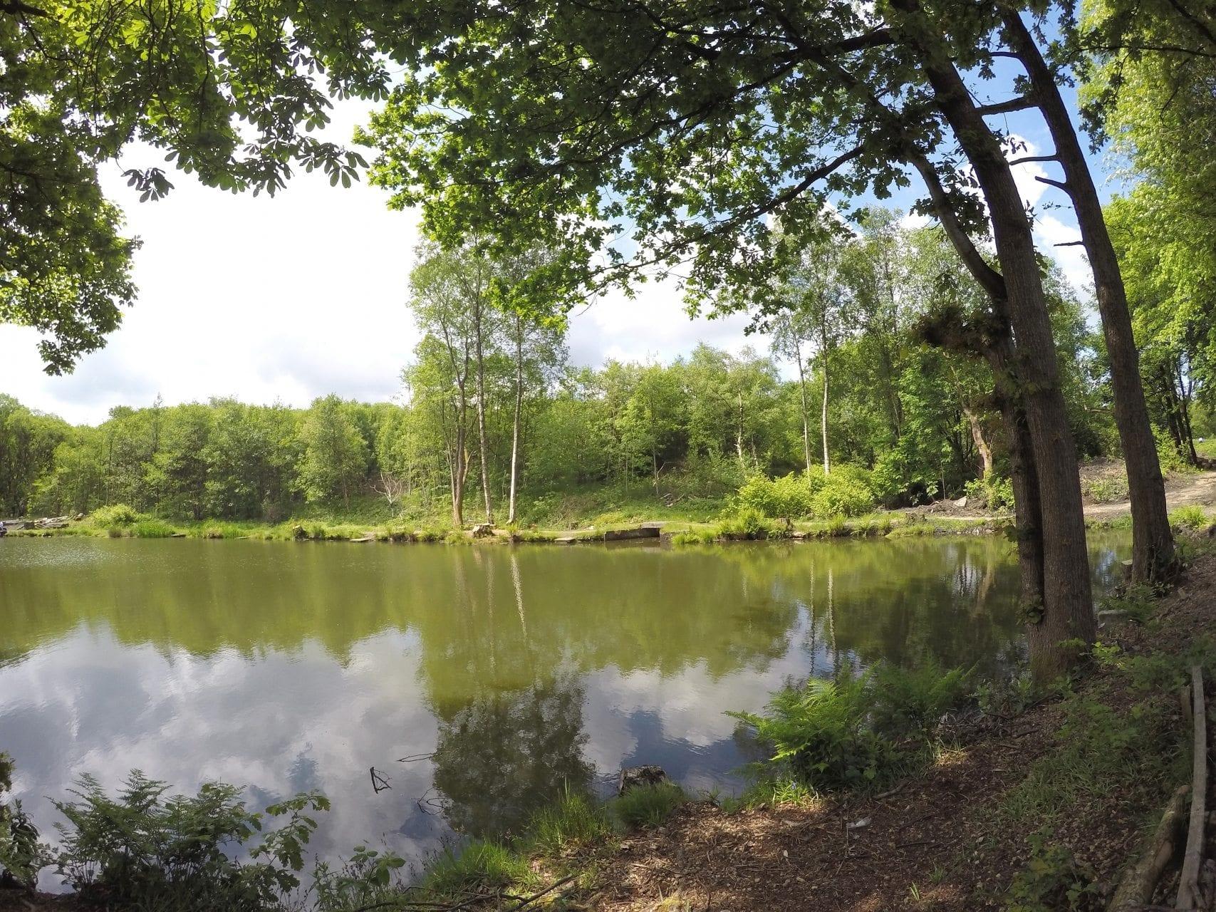 8 Lakes Bradshaw Hall Fishing