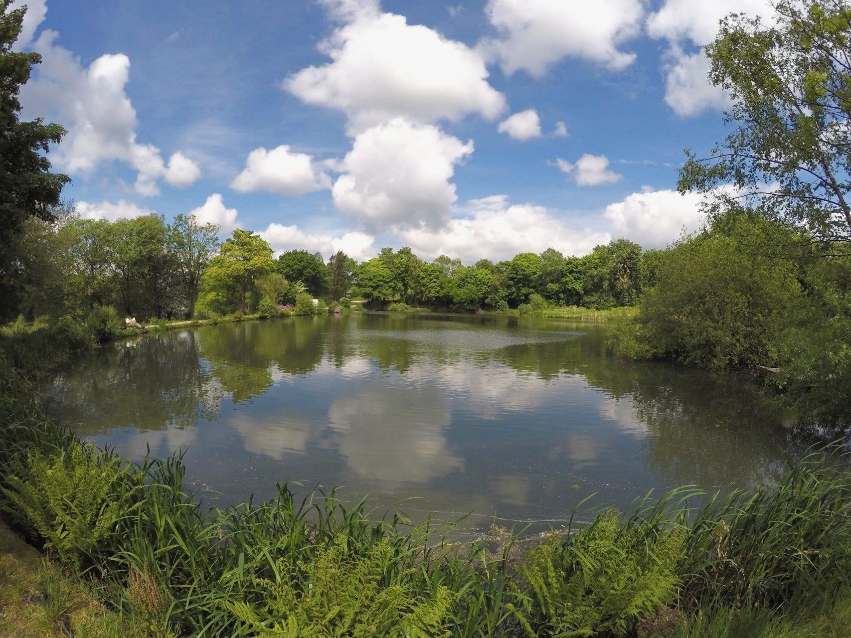 Specimen Lake Bradshaw Hall Fisheries