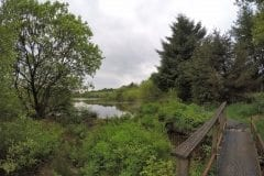 Walkway at Smithhills Moor Fishery