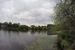 Bryan Hey Reservoir Smithhills Fishery