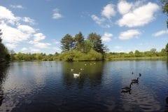 Cuerden Valley Lake looking towards the Island