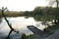 Farington Lodges - The small pond