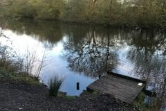 Farington Lodges a Typical swim