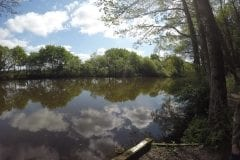 Decent pegs Farington Lodges, Fishing in Lancashire