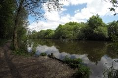 Fishing in Lancashire Farington Lodges