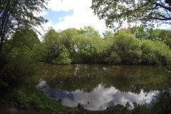 Farington Lodges Fishing in Lancashire
