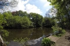 Farington Lodges, Narrow section good features to fish to