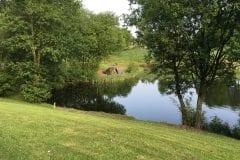 Lush banking @ Foxs Lake