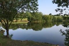 Foxs Lake Wyreside