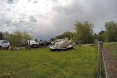 Greenhalgh Lodge Fishery Cow
