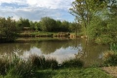 Heskin Old Hall Farm Pond 3