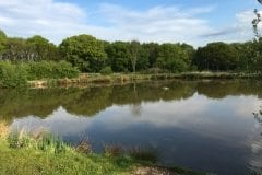 Pond 2 Heskin Old Hall Farm Fisheries