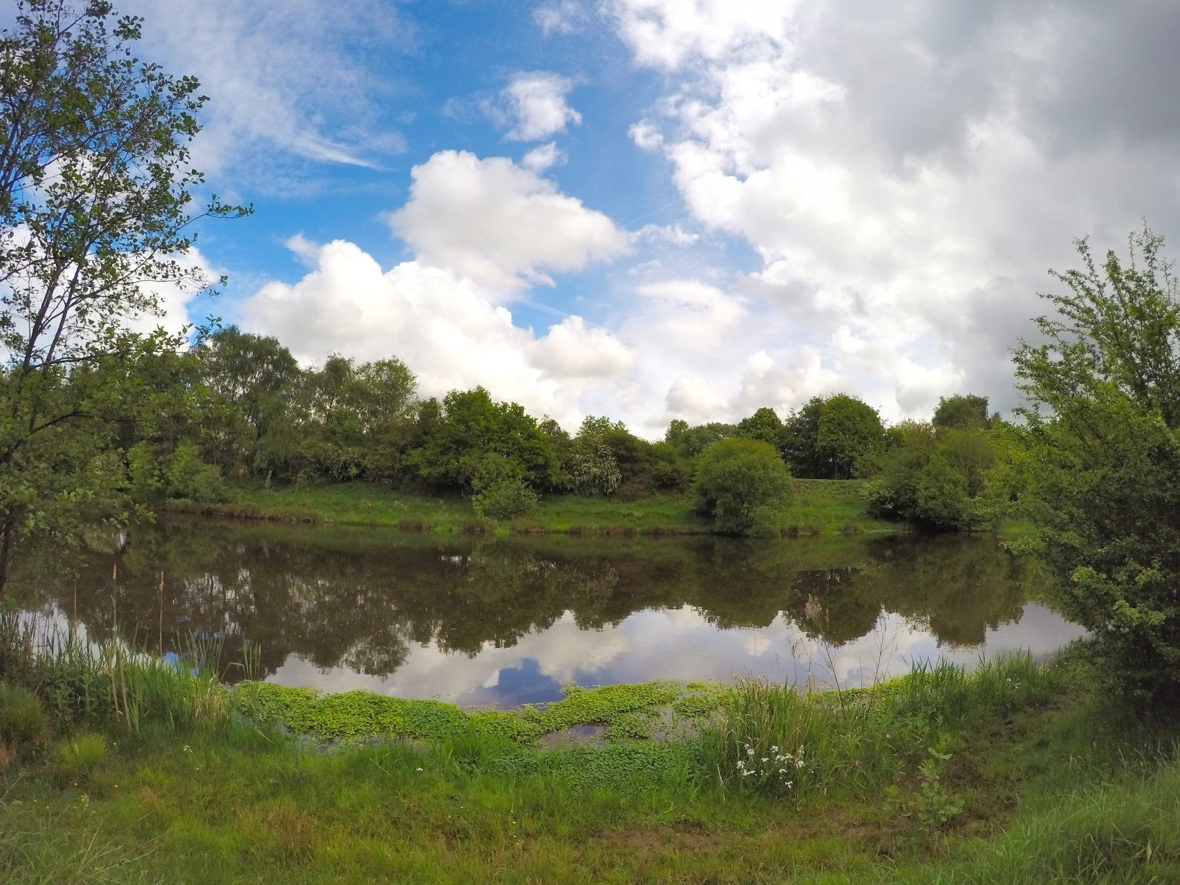 Ince Hindley Deep Pit Crucian water Fishing in Lancashire