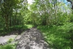 Path between Deep pit and square lodge Hindly