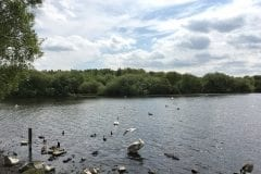 Pennington Flash Country Park - Lowton and Pennington
