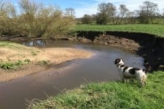 Barney River Lostock Leyland