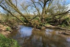 Leyland River Lostock