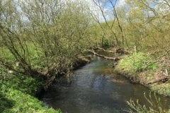 River Lostock