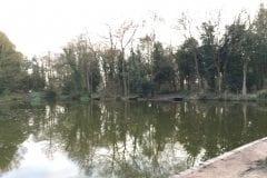 Shruggs Wood Fishing In Lancashire