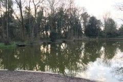 Leyland Fishing - Shruggs Wood