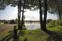 Tree lined, Sunnyside 2 Lake