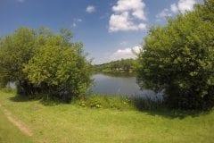 Wyreside Lakes Fishery - Sunnyside 2