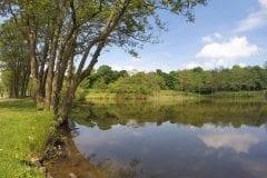 River Lake Wyreside