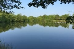 Wyreside Fishery Sunnyside 1