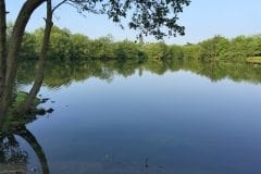 Wyreside Lakes Sunnyside 1