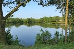 Sunnyside 1 Wyreside Lakes Fisheries