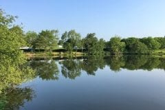 Sunnyside 1 Lake