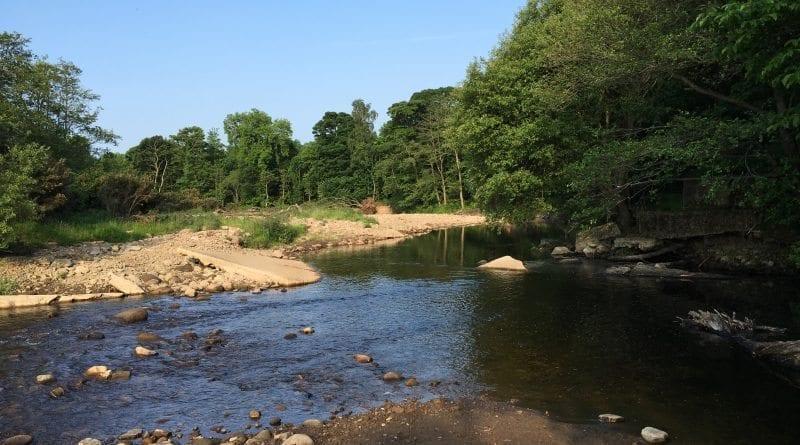 River Wyre - Wyreside