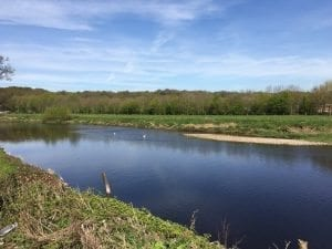 Ribble Samlesbury Fishing