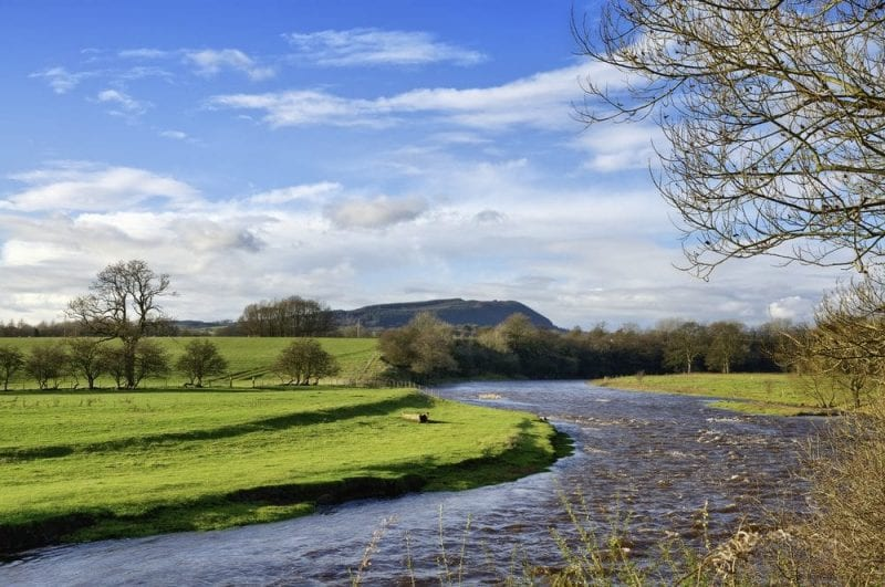 River Ribble | Fishing in Lancashire