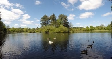 Fishing in Lancashire Now featuring Video !