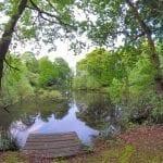 Runshaw Pool, Leyland
